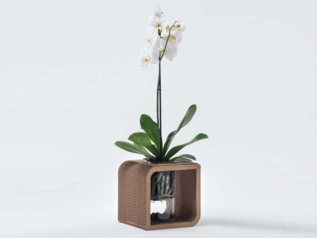 Vaso decorativo in cartone portafiori To Be by Giorgio Caporaso, 2012. Collezione Ecodesign, LessMore