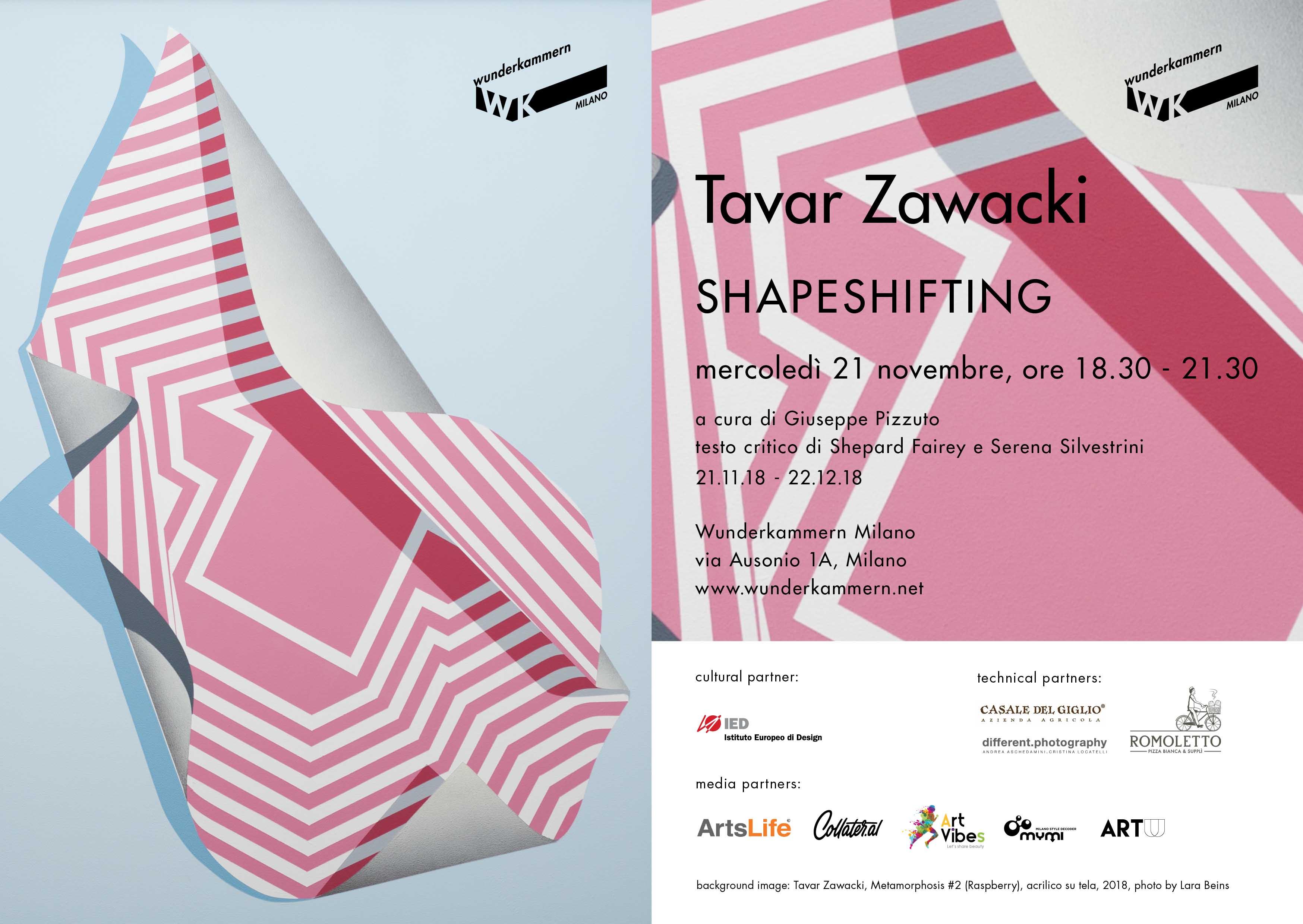 Dal 21 novembre al 22 dicembre 2018, la prima personale in Italia dell'artista americano Tavar Zawacki, SHAPESHIFTING, alla Wunderkammern di Milano.