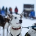 Kiruna, la città di una fiaba artica − Reportage by Oguzhan Erim